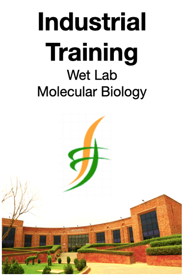 Industrial Training Molecular Biology-min (1)